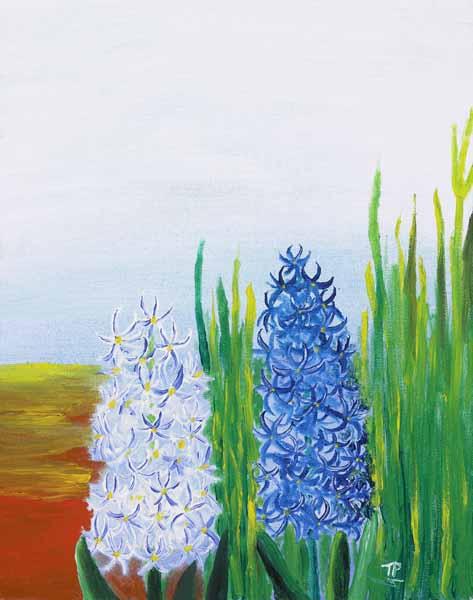 Hyacinth - 18x15w - $115